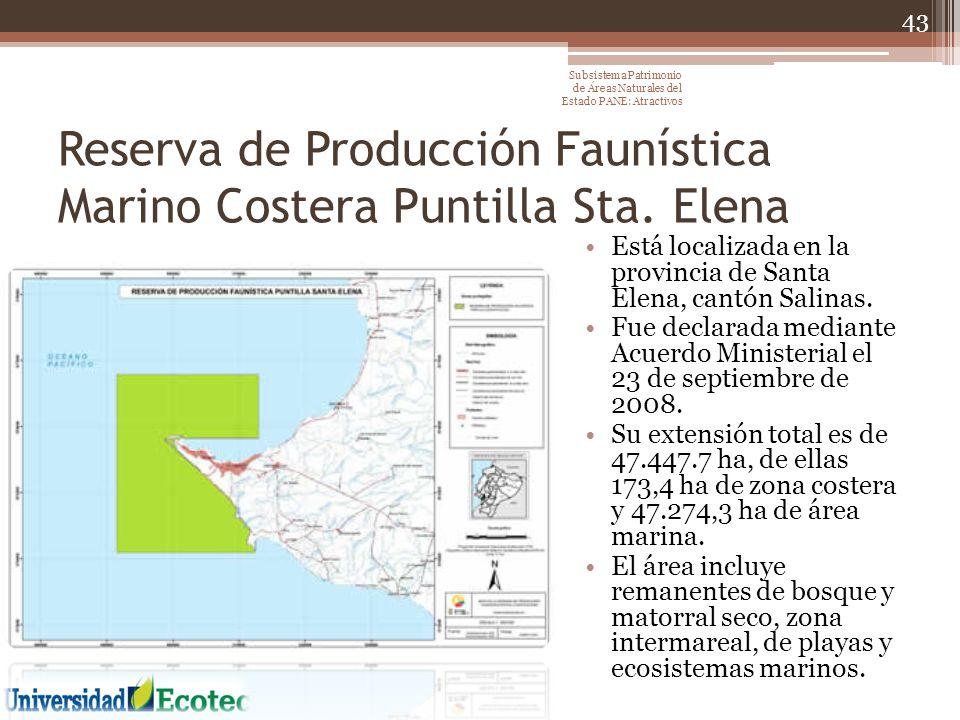 Reserva de Producción Faunística Marino Costera Puntilla Sta. Elena Está localizada en la provincia de Santa Elena, cantón Salinas. Fue declarada medi