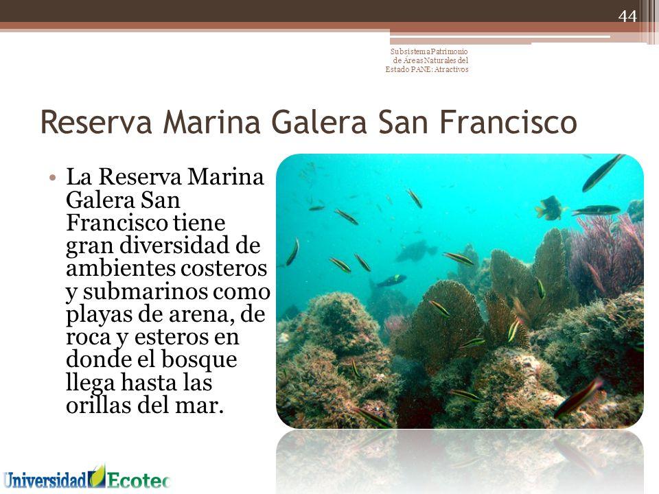 Reserva Marina Galera San Francisco La Reserva Marina Galera San Francisco tiene gran diversidad de ambientes costeros y submarinos como playas de are
