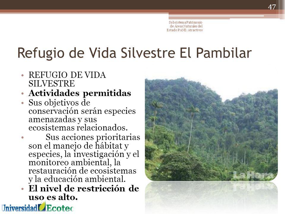 Refugio de Vida Silvestre El Pambilar REFUGIO DE VIDA SILVESTRE Actividades permitidas Sus objetivos de conservación serán especies amenazadas y sus e
