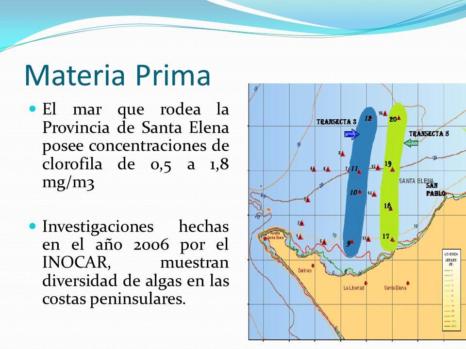 Materia Prima El mar que rodea la Provincia de Santa Elena posee concentraciones de clorofila de 0,5 a 1,8 mg/m3 Investigaciones hechas en el año 2006