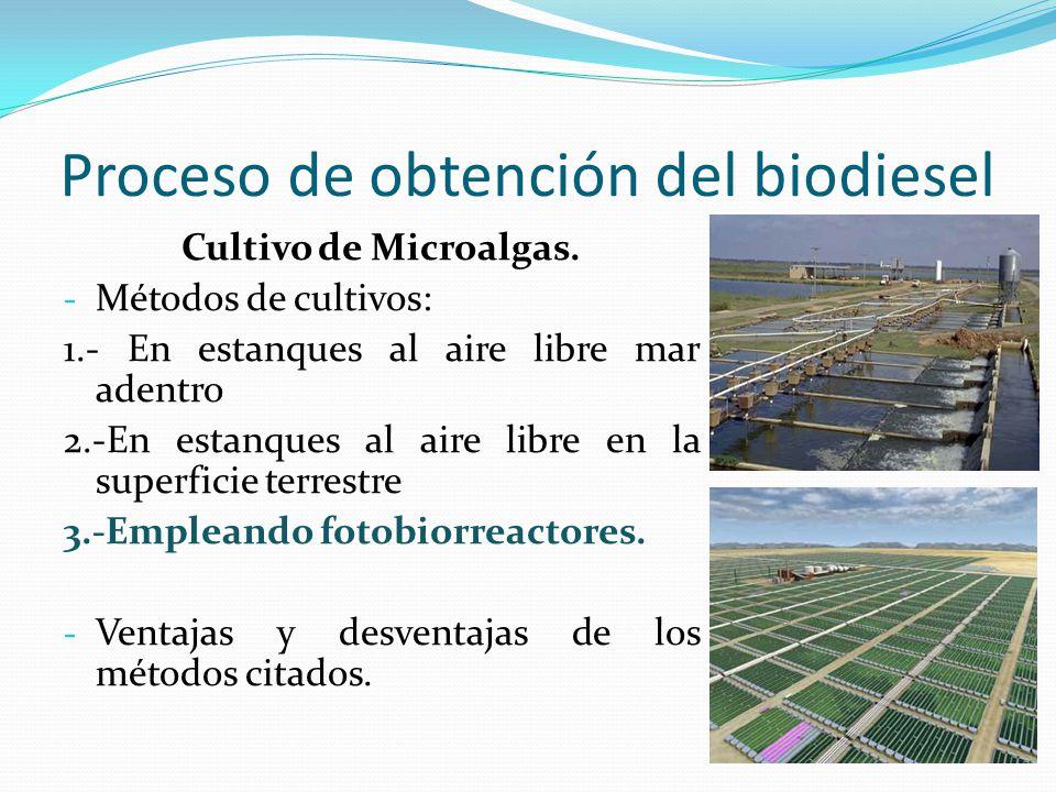 Proceso de obtención del biodiesel Cultivo de Microalgas. - Métodos de cultivos: 1.- En estanques al aire libre mar adentro 2.-En estanques al aire li