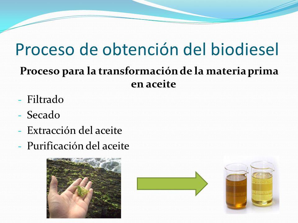 Proceso de obtención del biodiesel Proceso para la transformación de la materia prima en aceite - Filtrado - Secado - Extracción del aceite - Purifica