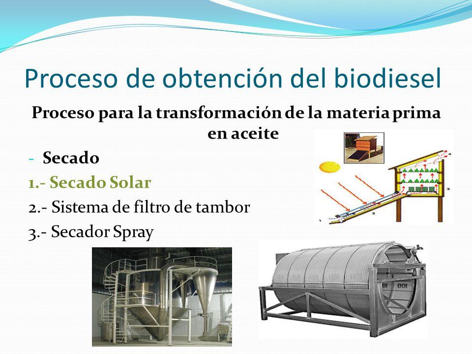 Proceso de obtención del biodiesel Proceso para la transformación de la materia prima en aceite - Secado 1.- Secado Solar 2.- Sistema de filtro de tam