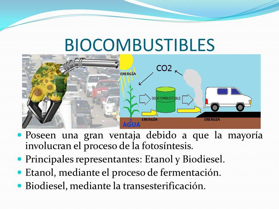 BIOCOMBUSTIBLES Poseen una gran ventaja debido a que la mayoría involucran el proceso de la fotosíntesis. Principales representantes: Etanol y Biodies