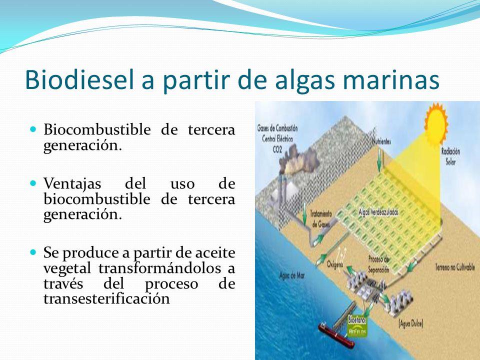 Biodiesel a partir de algas marinas Biocombustible de tercera generación. Ventajas del uso de biocombustible de tercera generación. Se produce a parti