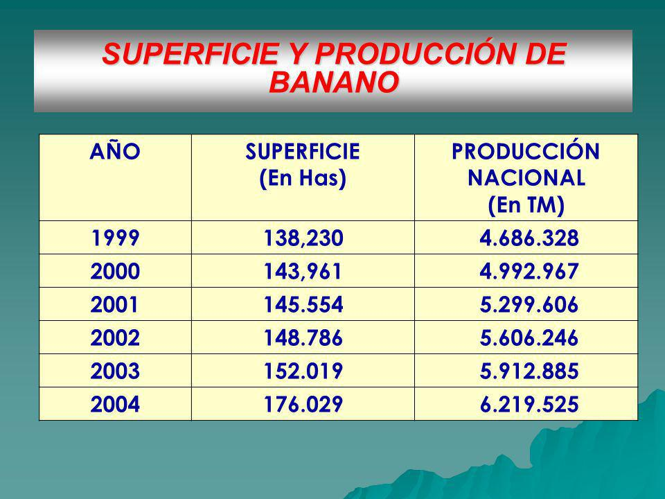 SUPERFICIE Y PRODUCCIÓN DE BANANO AÑOSUPERFICIE (En Has) PRODUCCIÓN NACIONAL (En TM) 1999138,230 4.686.328 2000143,961 4.992.967 2001145.554 5.299.606 2002148.786 5.606.246 2003152.019 5.912.885 2004176.029 6.219.525