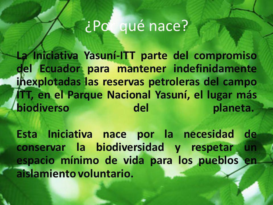 ¿Por qué nace? La Iniciativa Yasuní-ITT parte del compromiso del Ecuador para mantener indefinidamente inexplotadas las reservas petroleras del campo