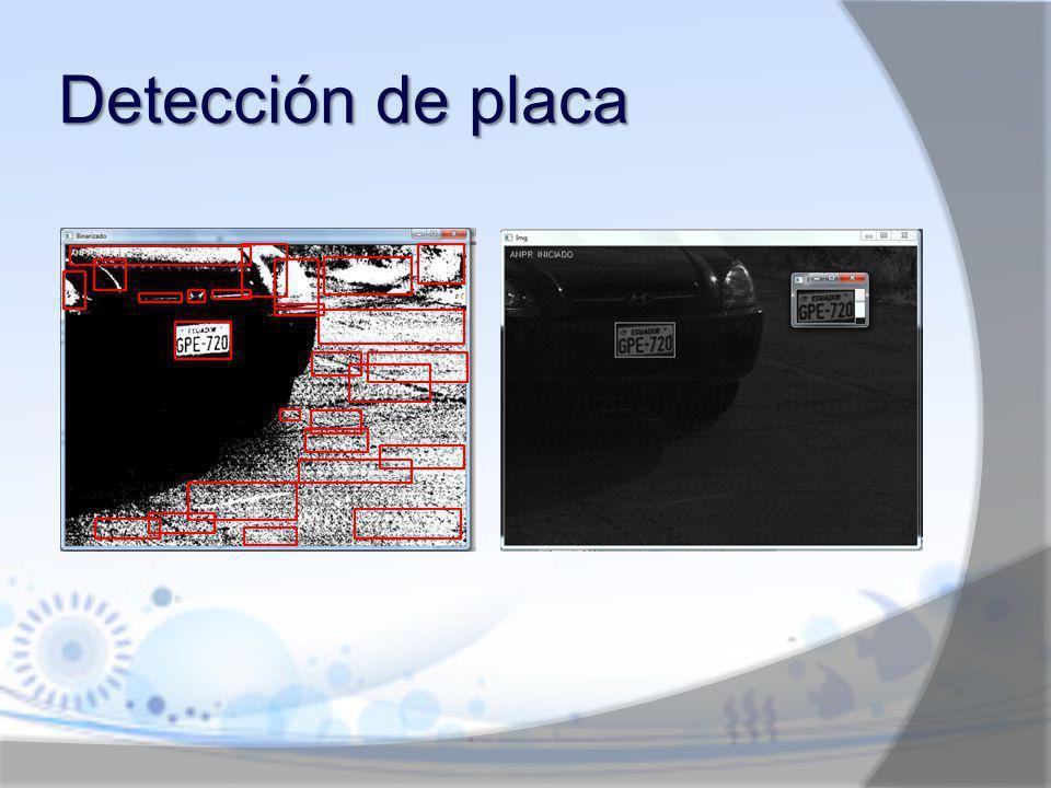 Detección de placa
