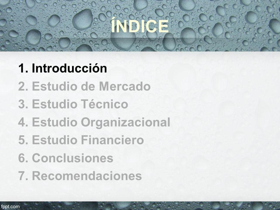 5. Estudio Financiero: Estructura de financiamiento