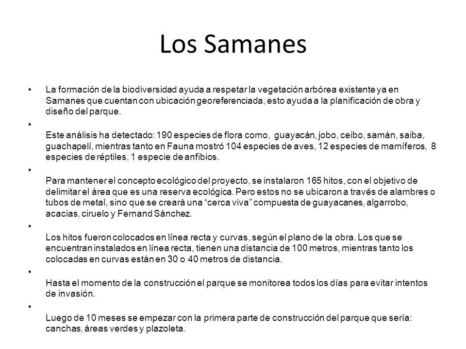 Los Samanes La formación de la biodiversidad ayuda a respetar la vegetación arbórea existente ya en Samanes que cuentan con ubicación georeferenciada, esto ayuda a la planificación de obra y diseño del parque.
