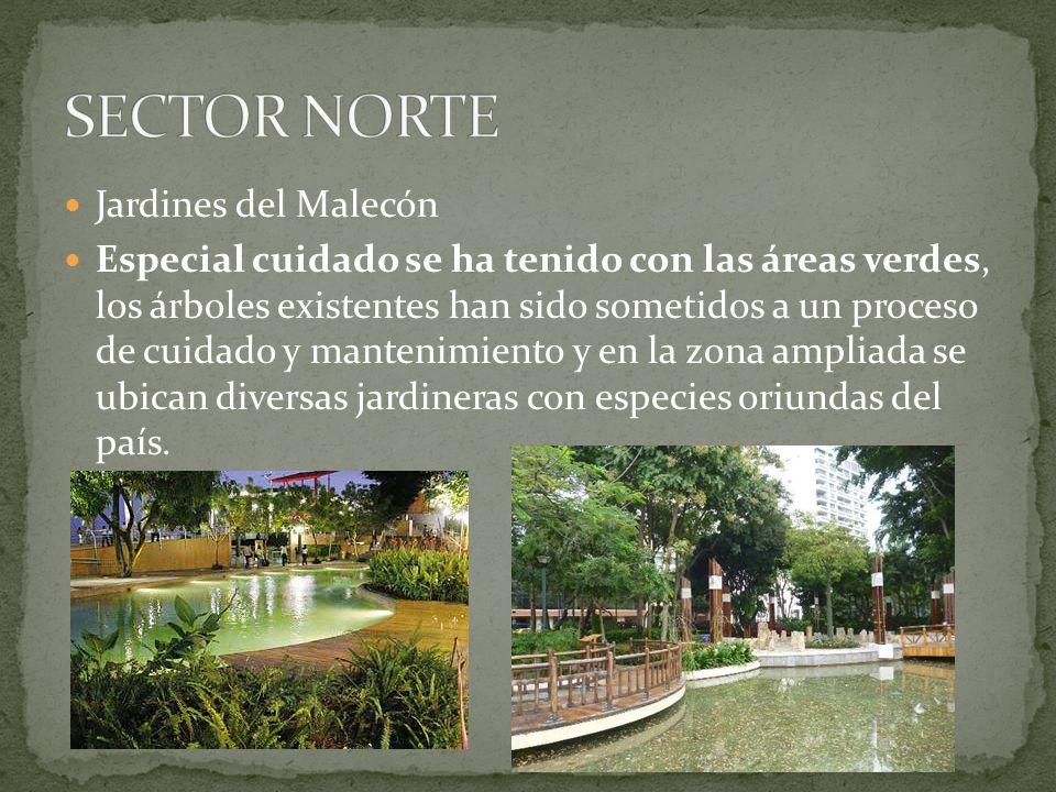 Jardines del Malecón Especial cuidado se ha tenido con las áreas verdes, los árboles existentes han sido sometidos a un proceso de cuidado y mantenimi