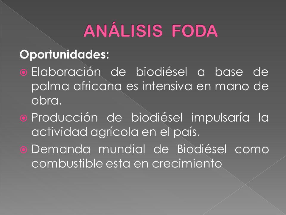 Oportunidades: Elaboración de biodiésel a base de palma africana es intensiva en mano de obra. Producción de biodiésel impulsaría la actividad agrícol