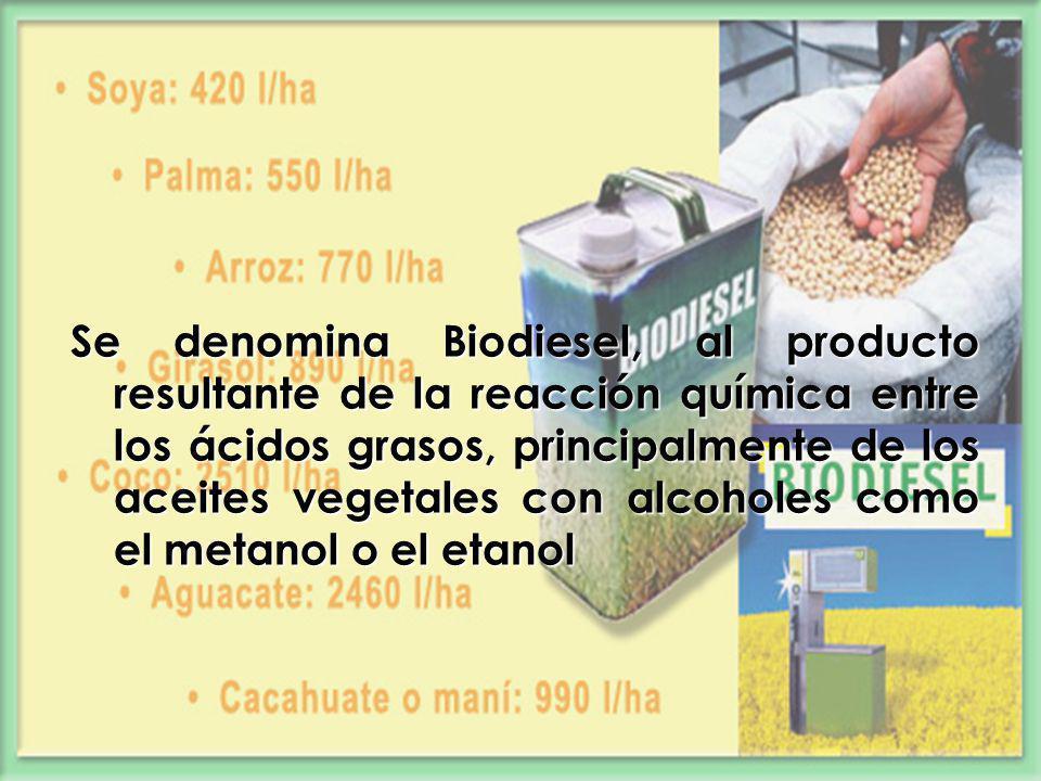 Se denomina Biodiesel, al producto resultante de la reacción química entre los ácidos grasos, principalmente de los aceites vegetales con alcoholes co