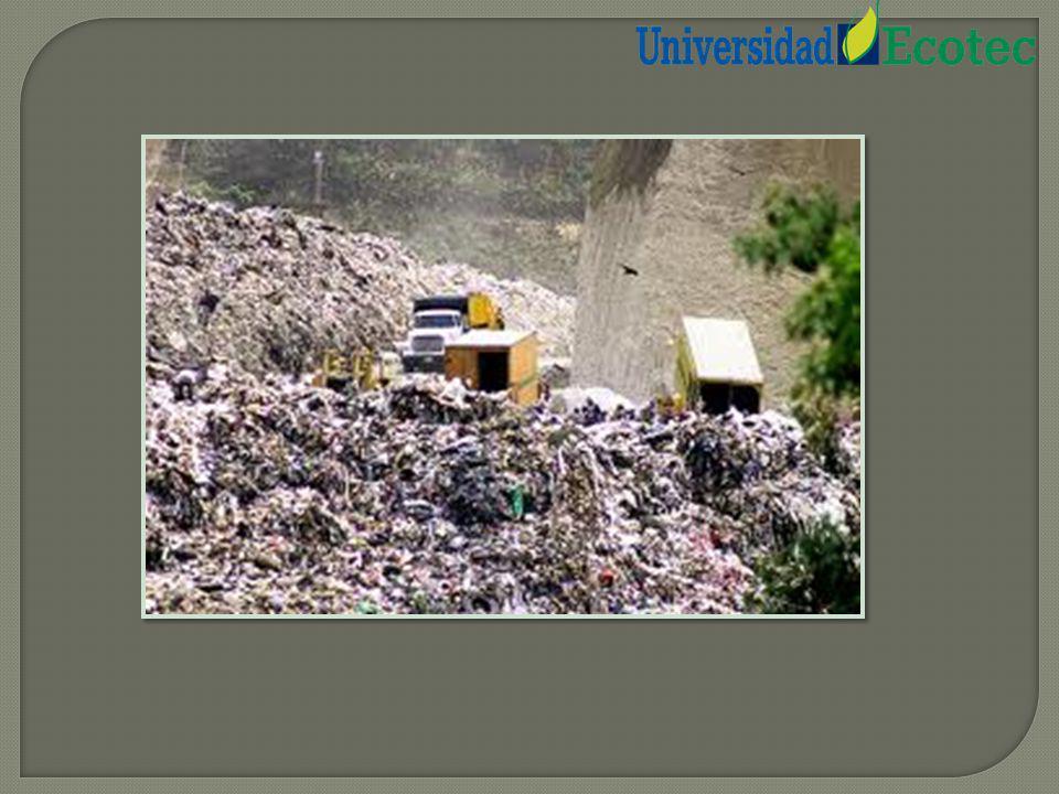 Vivimos en una sociedad de consumo en la que los residuos que generamos se han convertido en un grave problema para el medio ambiente, debido a que es