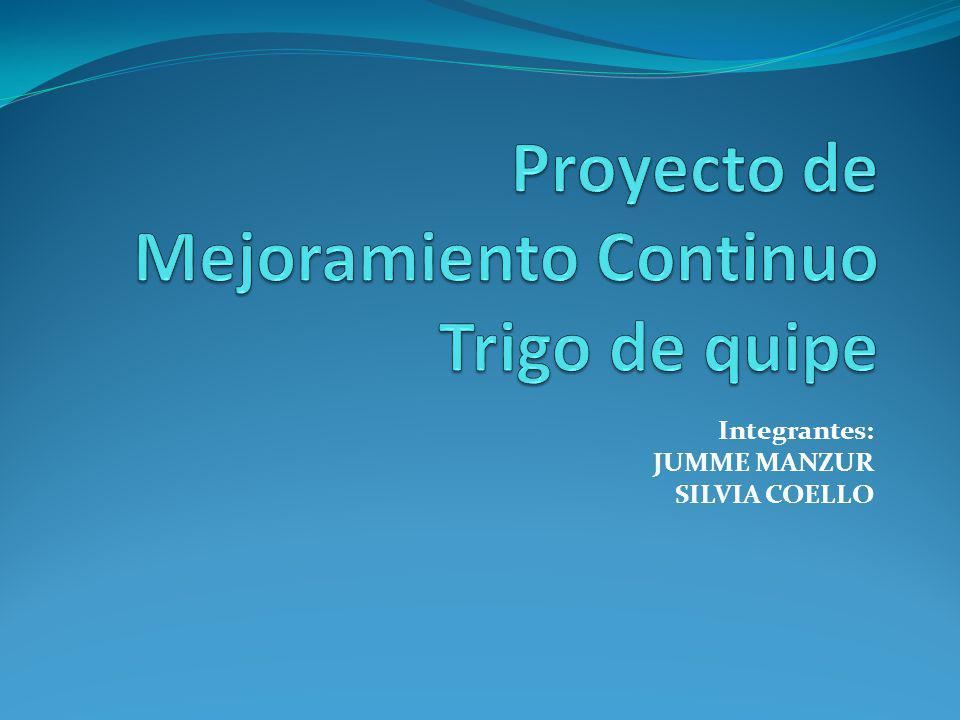 Integrantes: JUMME MANZUR SILVIA COELLO