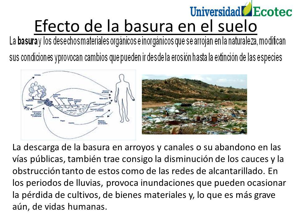 Efecto de la basura en el suelo La descarga de la basura en arroyos y canales o su abandono en las vías públicas, también trae consigo la disminución