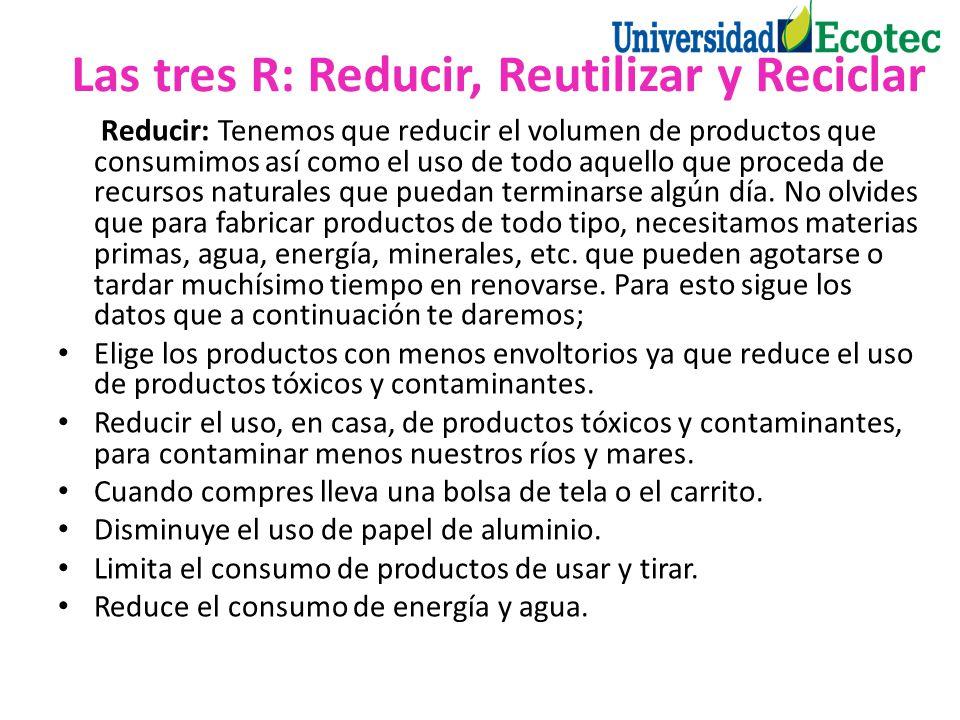 Reducir: Tenemos que reducir el volumen de productos que consumimos así como el uso de todo aquello que proceda de recursos naturales que puedan termi