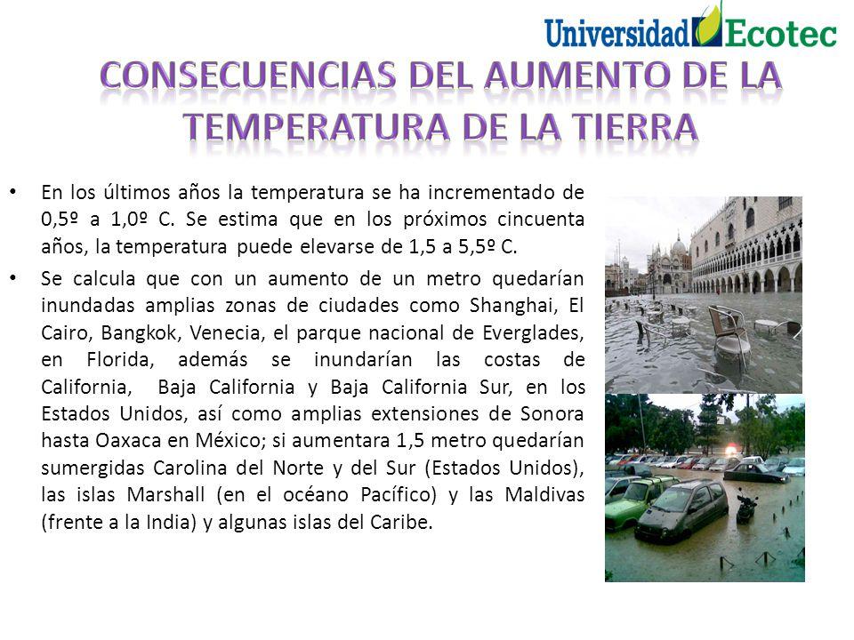 En los últimos años la temperatura se ha incrementado de 0,5º a 1,0º C. Se estima que en los próximos cincuenta años, la temperatura puede elevarse de