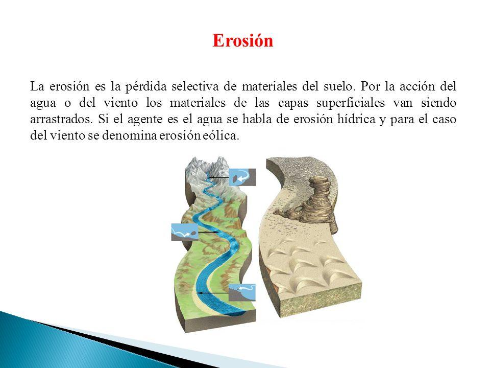 Erosión La erosión es la pérdida selectiva de materiales del suelo. Por la acción del agua o del viento los materiales de las capas superficiales van