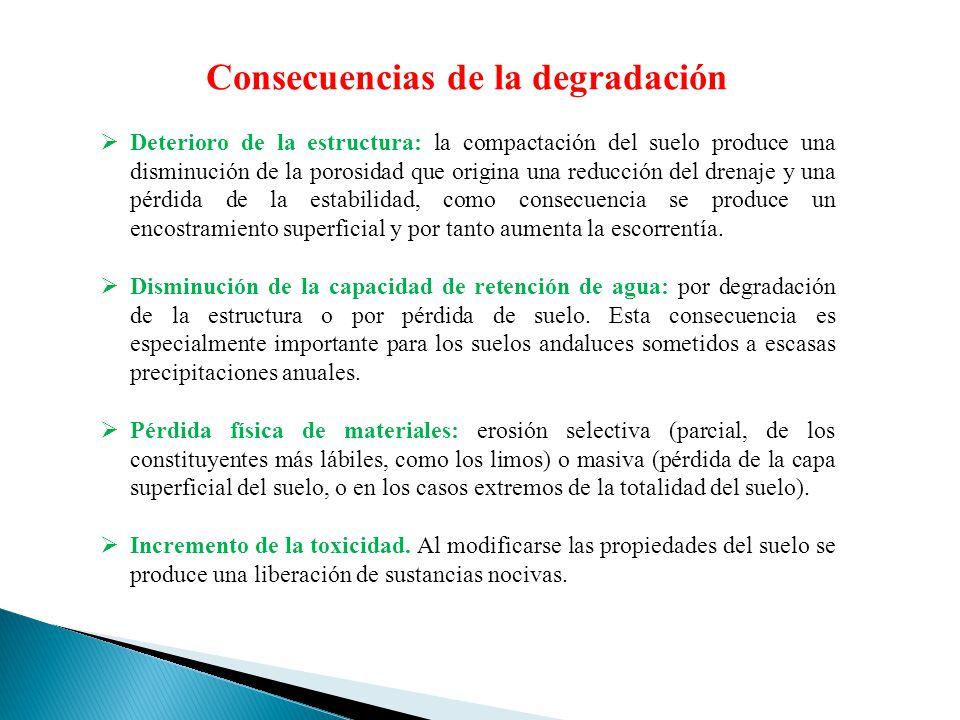 Consecuencias de la degradación Deterioro de la estructura: la compactación del suelo produce una disminución de la porosidad que origina una reducció