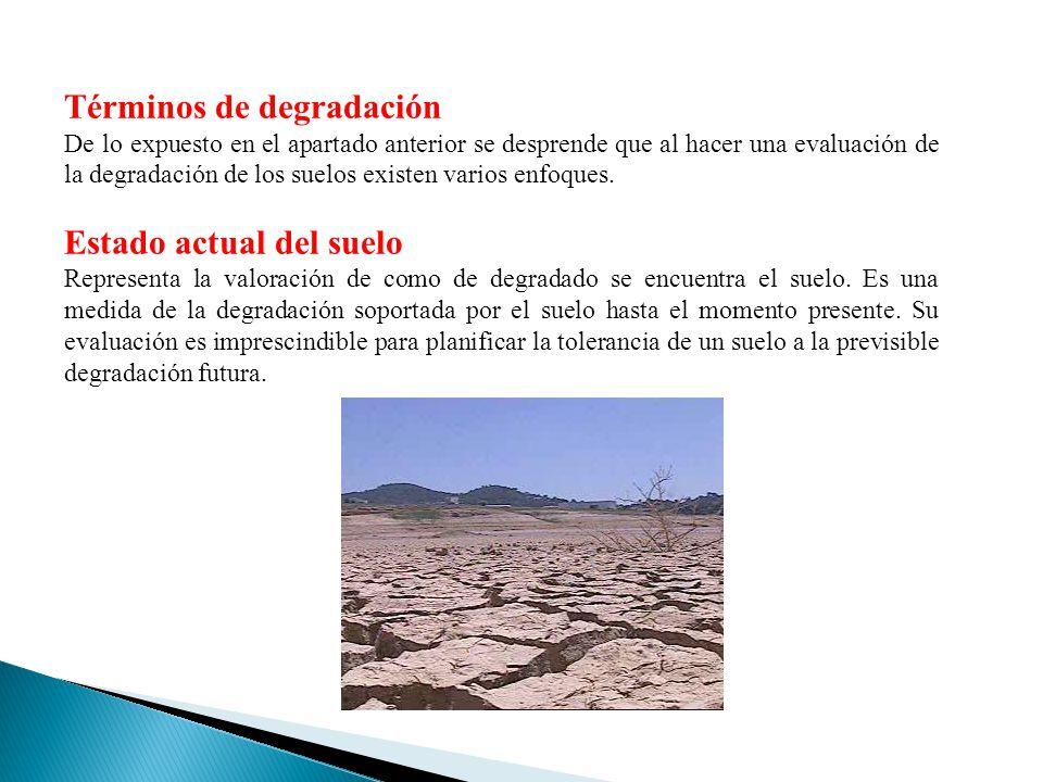 Términos de degradación De lo expuesto en el apartado anterior se desprende que al hacer una evaluación de la degradación de los suelos existen varios