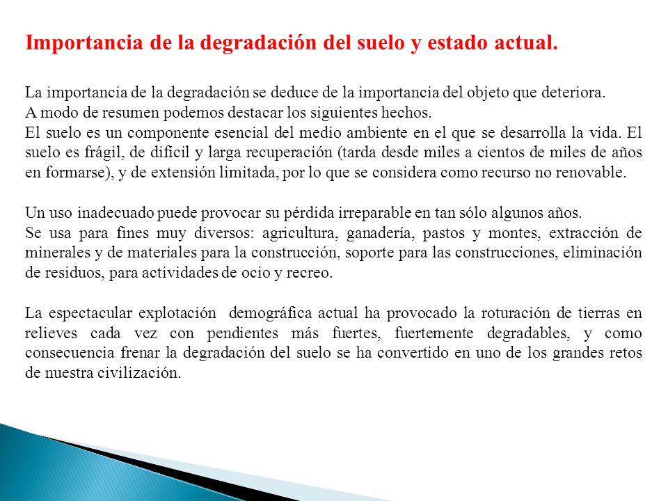 Importancia de la degradación del suelo y estado actual. La importancia de la degradación se deduce de la importancia del objeto que deteriora. A modo