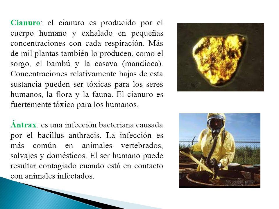 Cianuro: el cianuro es producido por el cuerpo humano y exhalado en pequeñas concentraciones con cada respiración. Más de mil plantas también lo produ