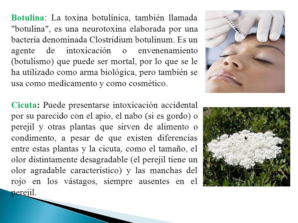 Botulina: La toxina botulínica, también llamada