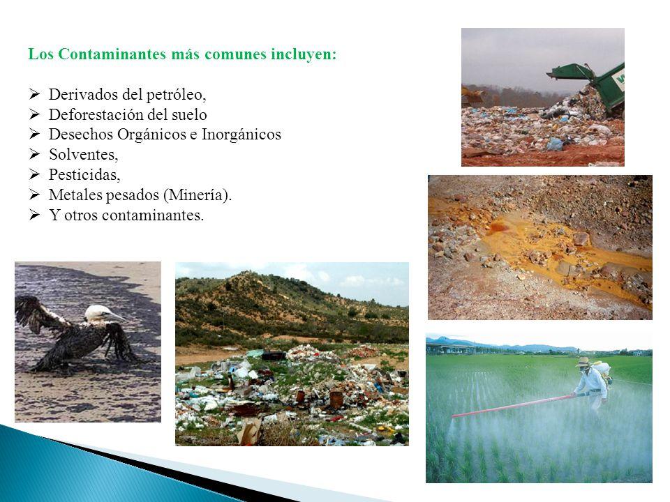 Los Contaminantes más comunes incluyen: Derivados del petróleo, Deforestación del suelo Desechos Orgánicos e Inorgánicos Solventes, Pesticidas, Metale