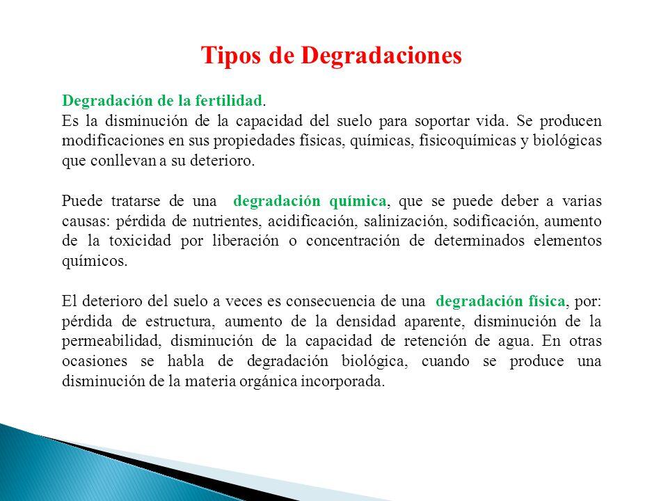 Tipos de Degradaciones Degradación de la fertilidad. Es la disminución de la capacidad del suelo para soportar vida. Se producen modificaciones en sus