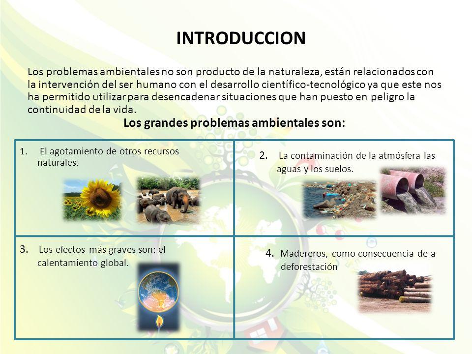 INTRODUCCION Los problemas ambientales no son producto de la naturaleza, están relacionados con la intervención del ser humano con el desarrollo cient