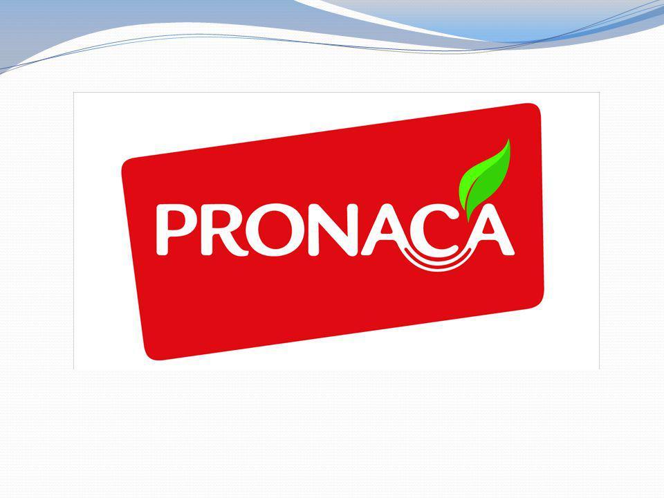 CONSUMIDORES: La primera responsabilidad de PRONACA es proveer productos innovadores, saludables y de calidad que alimenten bien a sus consumidores y contribuyan al bienestar y satisfacción de sus familias.