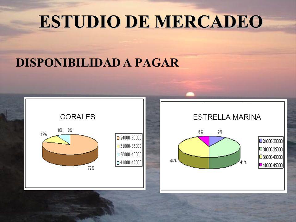 DISPONIBILIDAD A PAGAR ESTUDIO DE MERCADEO CORALES ESTRELLA MARINA