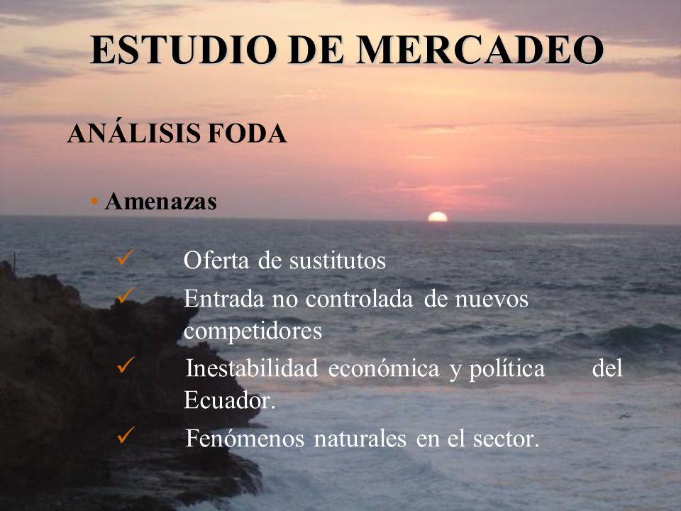 Oferta de sustitutos Entrada no controlada de nuevos competidores Inestabilidad económica y política del Ecuador. Fenómenos naturales en el sector. ES