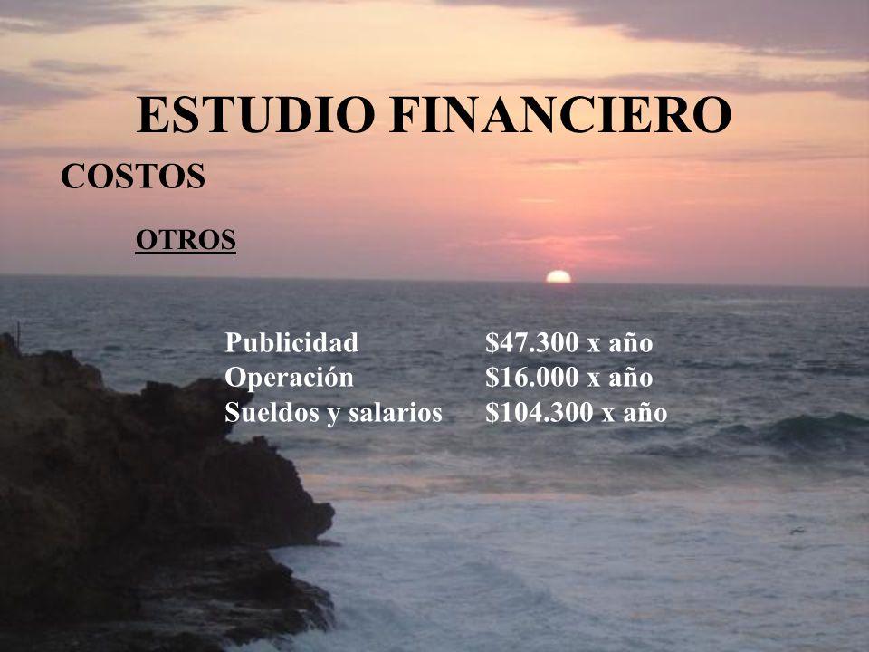 ESTUDIO FINANCIERO COSTOS OTROS Publicidad$47.300 x año Operación$16.000 x año Sueldos y salarios$104.300 x año