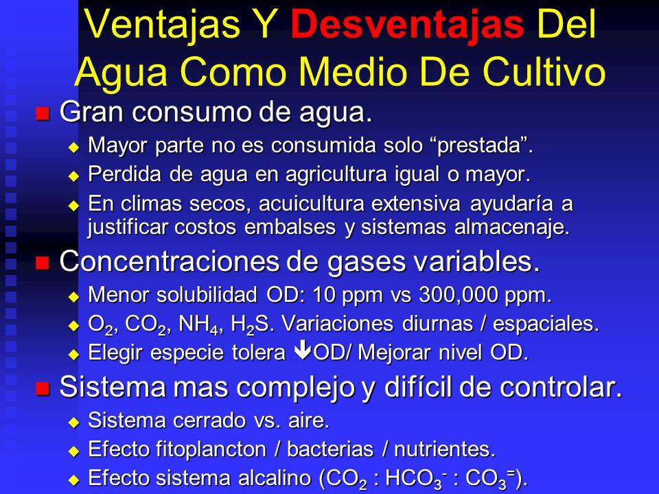 Ventajas Y Desventajas Del Agua Como Medio De Cultivo Gran consumo de agua. Gran consumo de agua. Mayor parte no es consumida solo prestada. Mayor par