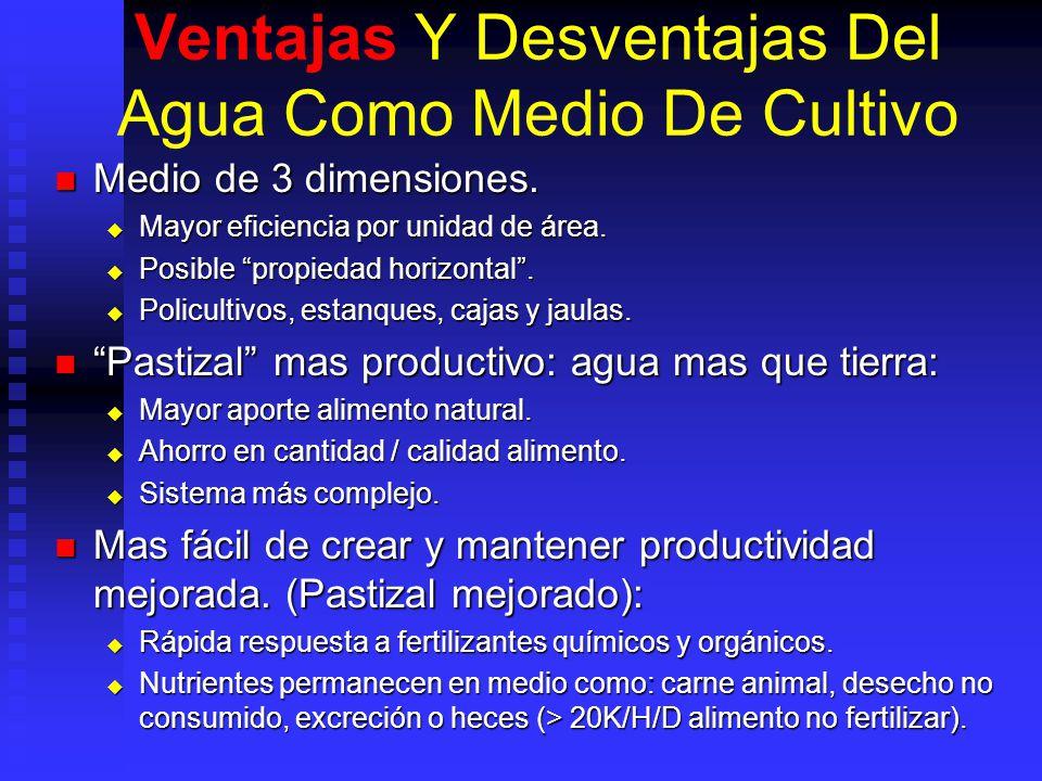 Ventajas Y Desventajas Del Agua Como Medio De Cultivo Medio de 3 dimensiones. Medio de 3 dimensiones. Mayor eficiencia por unidad de área. Mayor efici