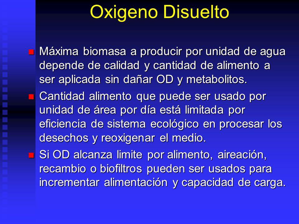 Oxigeno Disuelto Máxima biomasa a producir por unidad de agua depende de calidad y cantidad de alimento a ser aplicada sin dañar OD y metabolitos. Máx