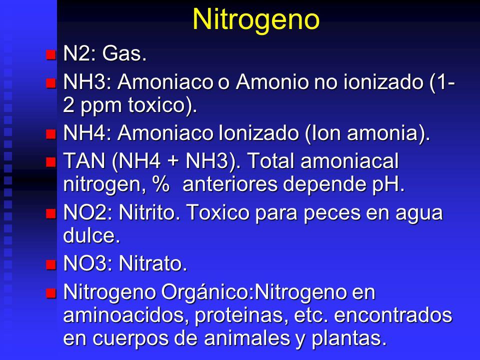 Nitrogeno N2: Gas. N2: Gas. NH3: Amoniaco o Amonio no ionizado (1- 2 ppm toxico). NH3: Amoniaco o Amonio no ionizado (1- 2 ppm toxico). NH4: Amoniaco
