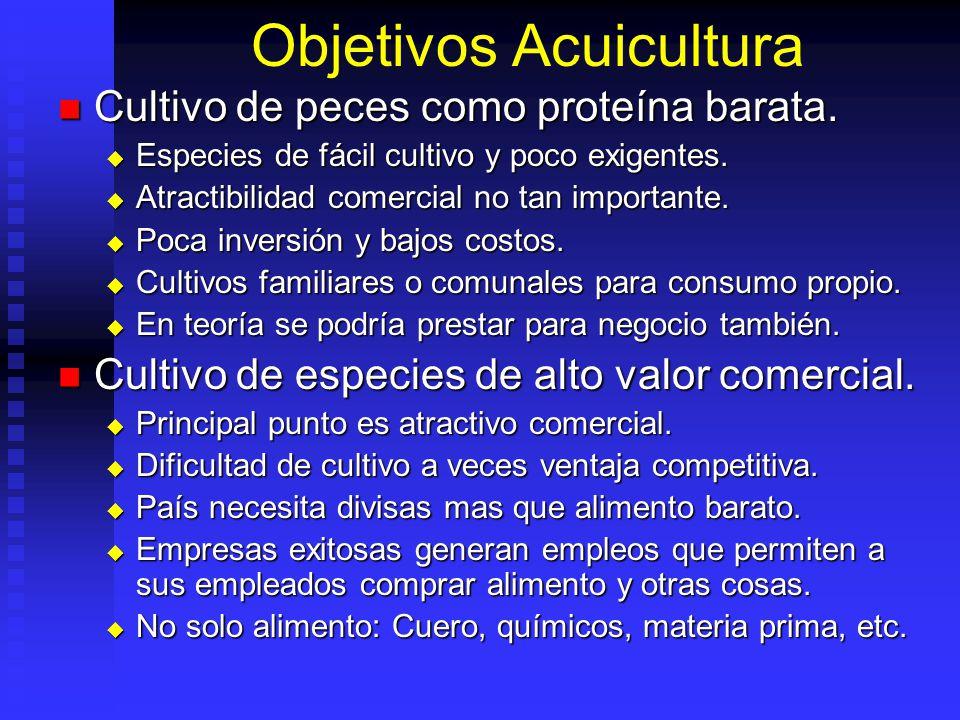 Objetivos Acuicultura Cultivo de peces como proteína barata. Cultivo de peces como proteína barata. Especies de fácil cultivo y poco exigentes. Especi