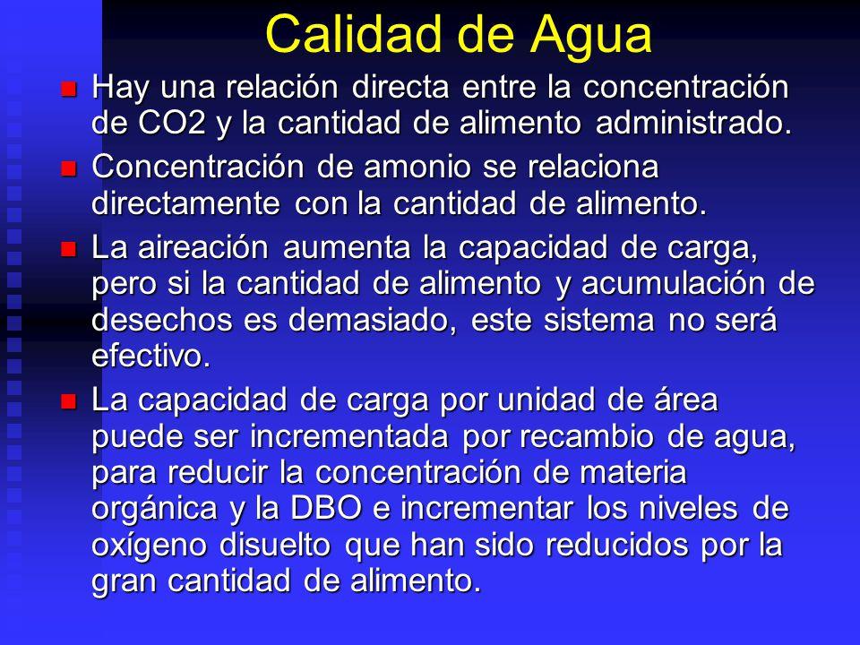 Calidad de Agua Hay una relación directa entre la concentración de CO2 y la cantidad de alimento administrado. Hay una relación directa entre la conce