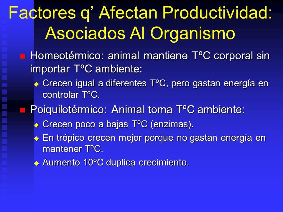 Factores q Afectan Productividad: Asociados Al Organismo Homeotérmico: animal mantiene TºC corporal sin importar TºC ambiente: Homeotérmico: animal ma