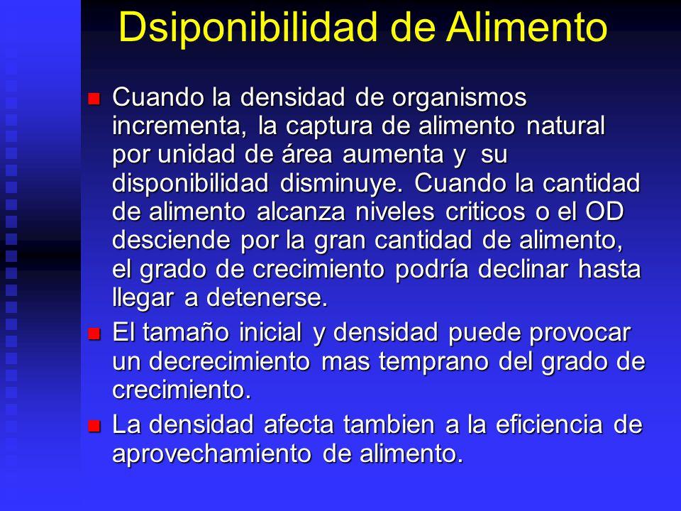 Dsiponibilidad de Alimento Cuando la densidad de organismos incrementa, la captura de alimento natural por unidad de área aumenta y su disponibilidad