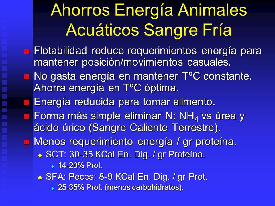 Ahorros Energía Animales Acuáticos Sangre Fría Flotabilidad reduce requerimientos energía para mantener posición/movimientos casuales. Flotabilidad re