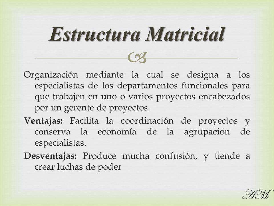 Organización mediante la cual se designa a los especialistas de los departamentos funcionales para que trabajen en uno o varios proyectos encabezados