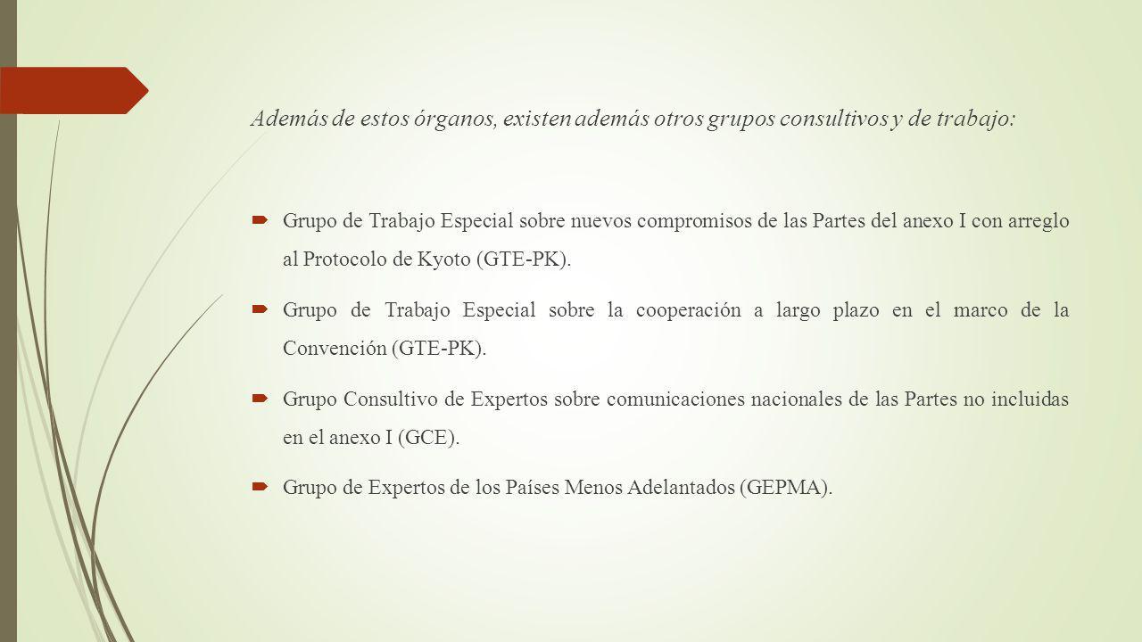 Además de estos órganos, existen además otros grupos consultivos y de trabajo: Grupo de Trabajo Especial sobre nuevos compromisos de las Partes del anexo I con arreglo al Protocolo de Kyoto (GTE-PK).