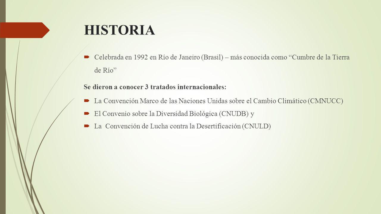 HISTORIA Celebrada en 1992 en Río de Janeiro (Brasil) – más conocida como Cumbre de la Tierra de Río Se dieron a conocer 3 tratados internacionales: La Convención Marco de las Naciones Unidas sobre el Cambio Climático (CMNUCC) El Convenio sobre la Diversidad Biológica (CNUDB) y La Convención de Lucha contra la Desertificación (CNULD)