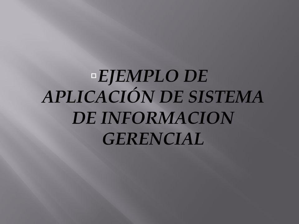 EJEMPLO DE APLICACIÓN DE SISTEMA DE INFORMACION GERENCIAL