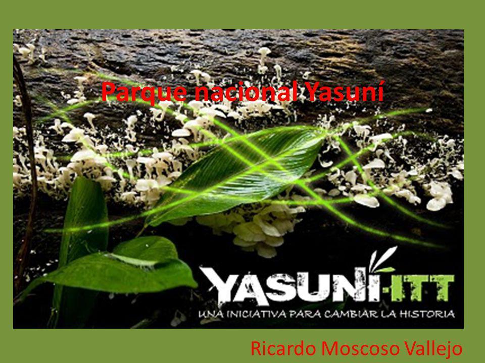 ¿Donde se encuentra ubicado el parque nacional Yasuni.