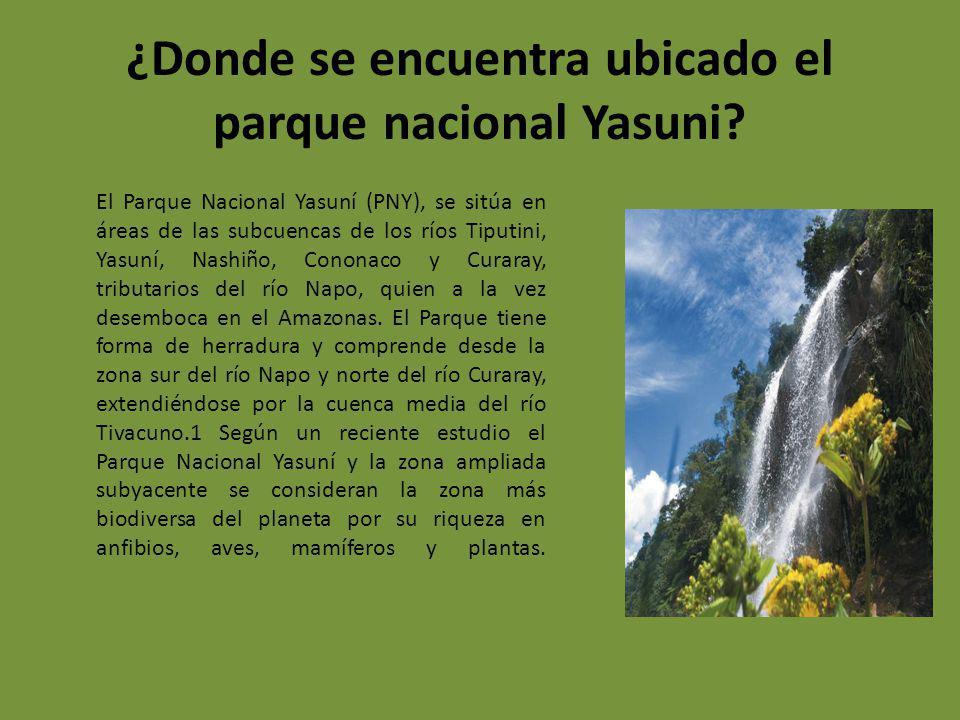 ¿Donde se encuentra ubicado el parque nacional Yasuni? El Parque Nacional Yasuní (PNY), se sitúa en áreas de las subcuencas de los ríos Tiputini, Yasu